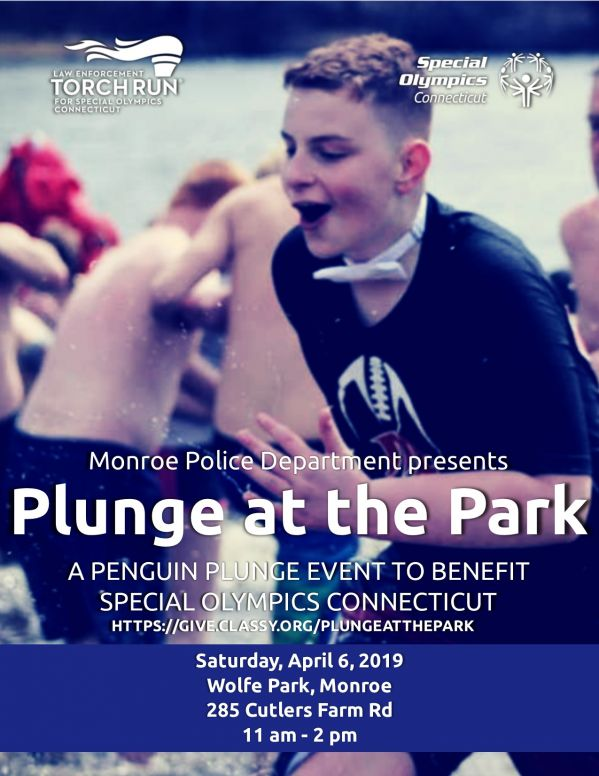 Plunge at the Park Flyer ParkTR19.jpg